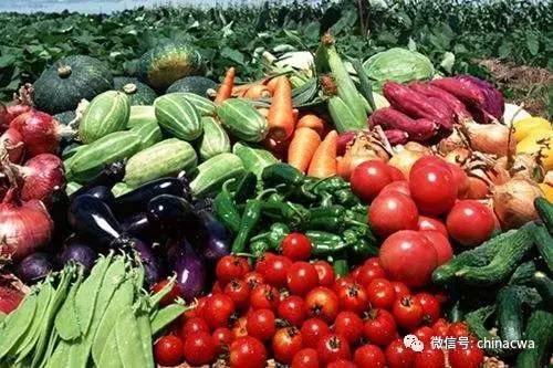 你可知道质量追溯体系,对食品企业究竟有多重要?